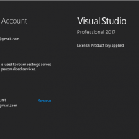 Active Visual Studio 2017